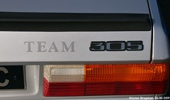 305 Team logo (Wouter Bregman) Tags: dt103vc peugeot 305 team 1982 peugeot305 logo sigle monogramme
