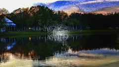 Stillness at Sunset (Carol (vanhookc)) Tags: digitalprocessing photoshop topazlabsadjust sunset lake quite serenity plasticwrapeffect painterly hss sliderssunday