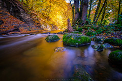 Stream in the fall (dannygreyton) Tags: stream river sweden europe forest fujifilmxt2 fujinon1024mm fujifilm fujifilmxseries longexposure longexposureshot rövarekulan water waterfall rocks fall autumn trees nature naturreservat nationalpark colorful sta