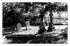 graves in B&W (steamnut777) Tags: graves worcestershire canon earlscroom maljonesphotography 1dmk3 trees shadows shade grass