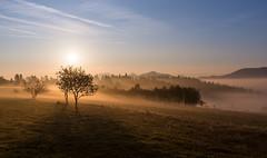 Poranek (puls*) Tags: sunrise świt poranek słońce światło light