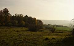 Heidelandschaft (Gabi Hahn) Tags: herbst heide nebel