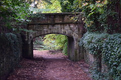 2409 (Tony Gillon) Tags: autumn2019 autumn october october2019 greatermanchester peakforestcanal