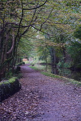 2412 (Tony Gillon) Tags: autumn2019 autumn october october2019 greatermanchester peakforestcanal