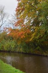 2439 (Tony Gillon) Tags: autumn2019 autumn october october2019 greatermanchester peakforestcanal