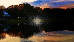 A Warm Sultry Evening (Carol (vanhookc)) Tags: digitalprocessing photoshop topazlabsadjust sunset lake quite serenity plasticwrapeffect