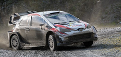 Toyota Yaris WRC - Meeke (rallysprott) Tags: sprott wdcc rallysprott 2019 wales rally gb penmachno 2 forest motor sport rallying toyota yaris wrc meeke nikon d7100