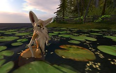Fennec_Mesh_One_Piece 11 (Corgi-boobs) Tags: furry secondlife fennec fox onepieceswimsuit swimsuit