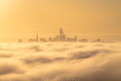 San Francisco skyline in the fog, California (Fabien Guittard) Tags: automne brume clouds fall landscape leverdesoleil nuages paysage sunrise travel ville voyage mist millvalley california unitedstatesofamerica