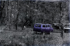 Purple (* Gemini-6 * (on&off)) Tags: grunge selectivecolor trees blackandwhite ford truck van vehicle transportation vintage diagonal distressed hdr