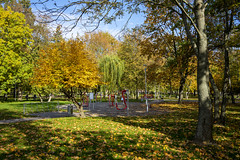 Gniezno (hedge climber) Tags: wielkopolska gniezno park urban jungle 2019 poland polska samyang35mm28 sony a7
