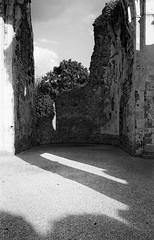 Abbazia Sant'Eustachio (francesco19739) Tags: abbazia abbey veneto italia italy leicam6 ilford monochrome bw trees sky nature wall