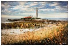 St Marys Lighthouse, Northeast Coast UK (stblackburn) Tags: lighthouse coastal coast seascape northeast northumberland uk