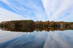 2019 Pond View (Read2me) Tags: cye jacobspond water reflection trees autumn clouds bluesky challengeclubwinner ge pregamewinner thechallengefactorywinner tcfunanimousnovember friendlychallenges