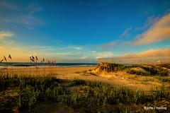 A Little Bit of Paradise (T i s d a l e) Tags: tisdale alittlebitofparadise beach coast southernobx summer september 2019 senorthcarolina