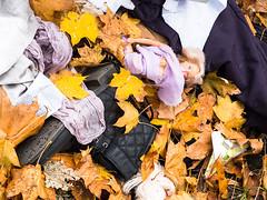 20191019-072 (sulamith.sallmann) Tags: freizeit mode pflanzen abfall ahornblatt ahornblätter berlin blatt blätter botanik deutschland doll europa herbst herbstblatt herbstblätter herbstlich mitte müll natur pflanze pflanzenteil puppe schuh spiel spielzeug trash umwelt wedding sulamithsallmann