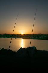 Gemelle al tramonto (Michele Fantini) Tags: mirroreye mirror sea water mare sunset tramonto colors light luci colori pesca cannedapesca porto