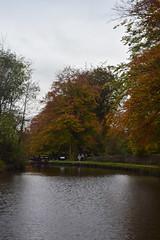 2362 (Tony Gillon) Tags: autumn2019 autumn october october2019 greatermanchester peakforestcanal marple