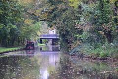 2419 (Tony Gillon) Tags: autumn2019 autumn october october2019 greatermanchester peakforestcanal