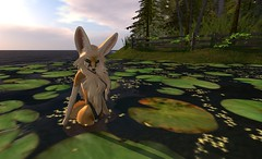 Fennec_Mesh_One_Piece 8 (Corgi-boobs) Tags: furry secondlife fennec fox onepieceswimsuit swimsuit