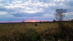 Prairie Sunrise (Dallas Sooner) Tags: oklahoma sky sunrise prairie hay october clouds dawn pasture harvest