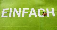 20191019-011 (sulamith.sallmann) Tags: pflanzen zeichen ahornblatt blatt blätter botanik einfach grün grünweis hellgrün herbstblatt natur pflanze pflanzenteil plakat simpel symbol typo zweifarbig sulamithsallmann