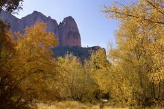 Zion Kolob Canyon, Utah, USA (swissuki) Tags: canyon cliffs zion kolob park mountain fall nature colors national sky usa landscape utah ut sandstone largelandscape