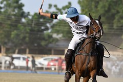 equestrian (15)