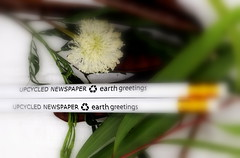 Earth Greetings (Grenzeloos1) Tags: macromondays themestationery pencils hmm recycled upcycled stationery