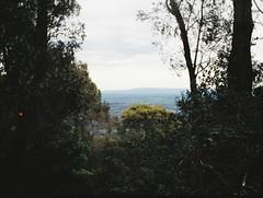 A view of the distance (Matthew Paul Argall) Tags: regula430 fixedfocus 110 110film subminiaturefilm lomographyfilm 200isofilm kalorama