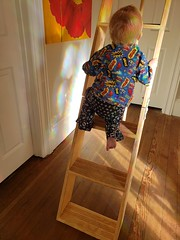 Fearless (quinn.anya) Tags: fearless toddler eliza climbing stairs ladder attic