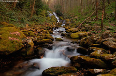 LittleBird+1_1015_TCW (nickp_63) Tags: haywood county nature long exposure canon 7d north carolina nc waterfall green mossy forest cascade rapids boulder trees