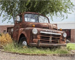 Dodge at the Market (A Anderson Photography, over 3.9 million views) Tags: dodge pickup canon rust delmargardens
