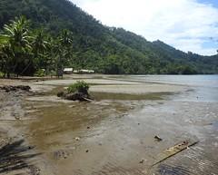 Mudflats at low tide (Joel Abroad) Tags: siboma village lowtide shoreline seashore mudflats morobeprovince papuanewguinea