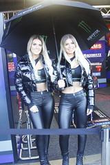 _MG_0017 (yahweh70) Tags: britishsuperbikes brands brandshatch bsb bsbbrandshatch bsbfinale motorsport motorracing motorbikes motorcycles bikes gridgirl gridgirls promogirl promo