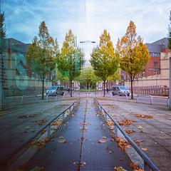 Reflections world of glass (Steve Samosa Photography) Tags: streetview urbanscene townscape autumnleaves glassreflections trees autumn merseyside worldofglass reflections sthelens england unitedkingdom