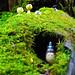 Totoro in mononoke forest