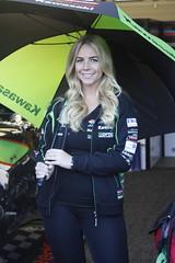 _MG_0004 (yahweh70) Tags: britishsuperbikes brands brandshatch bsb bsbbrandshatch bsbfinale motorsport motorracing motorbikes motorcycles bikes gridgirl gridgirls promogirl promo