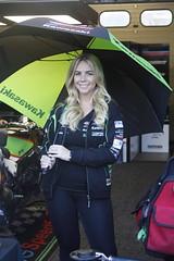 _MG_0001 (yahweh70) Tags: britishsuperbikes brands brandshatch bsb bsbbrandshatch bsbfinale motorsport motorracing motorbikes motorcycles bikes gridgirl gridgirls promogirl promo