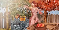 ♚ #792 ♚ (Caity Saint) Tags: decoy crystal dress backdrop gacha collabor88 c88 posefair autumn ak akeruka maitreya sl secondlife doll pixels avatar apple