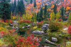 Autumn Colors of the Canyon (Cole Chase Photography) Tags: autumn fall pacificnorthwest october washingtonstate leavenworth wenatcheenationalforest wenatcheeriver