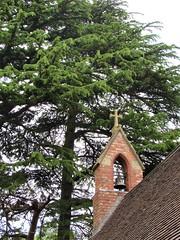 Photo of St Richard & St Hubert, Hadzor