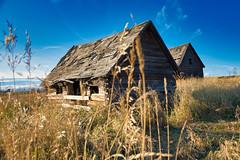 twin barns near buck lake (DaleC/@flickrfumes) Tags: d7200 alberta barns broken prairie canada