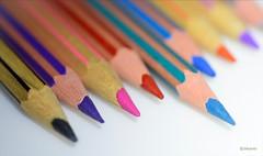MACRO MONDAYS | Stationery (Jehanmi) Tags: couleurs color pencils crayons 60mm nikkor d7200 nikond7200 nikon photography macrophotography macro hmm stationery macromondays