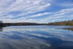 Ricketts Glen State Park - Explored October 22, 2019 (Sandra Mahle) Tags: rickettsglenstatepark pennsylvania lakejean water lake autumn marsh fallseason colorsofautumn ngysa ngysaex canon naturephotography nature