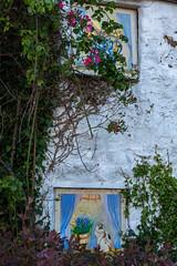 Painted Windows (Jocey K) Tags: triptoukanderoupe2019 june uk wales beaumaris sign windows building house plants artwork mural