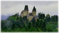 Burg Wartenstein / Wartenstein Castle (ursula.valtiner) Tags: burg castle wald forest raachamhochgebirge bezirkneunkirchen niederösterreich loweraustriaaustria autriche österreich