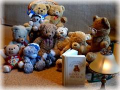 Lesestunde in der Bärenrunde / Reading session for bears (ursula.valtiner) Tags: stofftier stuffedanimal softtoy cuddlytoy bär bear teddybär teddybear buch book lesen read flatz niederösterreich loweraustria austria autriche österreich