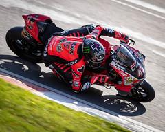 """Champ"" (russpowney) Tags: scottreading monster ducati bewiser britishsuperbikes brandshatch motorcycles racing bikes paulbird"