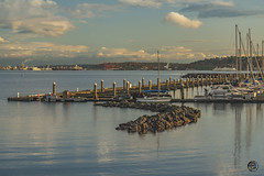 After Glow Elliot Bay 2019 (TheArtOfPhotographyByLouisRuth) Tags: afterglowelliotbay water waterreflections waterglimmer waterscapes artofimages perspective professional prophoto nikond810 nikon85mmf18 nikonflickraward nikonprimes landscape louisruthphotography boat dock pier